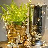 Led String Lights,ZISTE Decorative Star Shape Lights for Bedroom, Patio, Parties,40 Leds lights 10ft,Warm White
