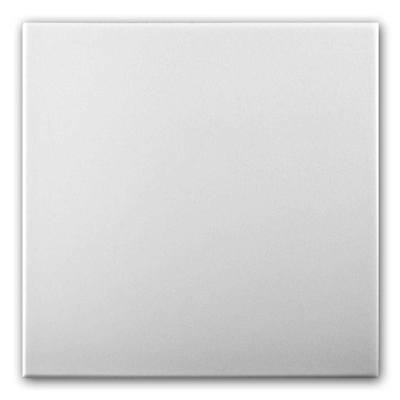 Azulejos de techo de espuma de poliestireno 0814 (paquete de 128 pc / 32 metros cuadrados) Blanco