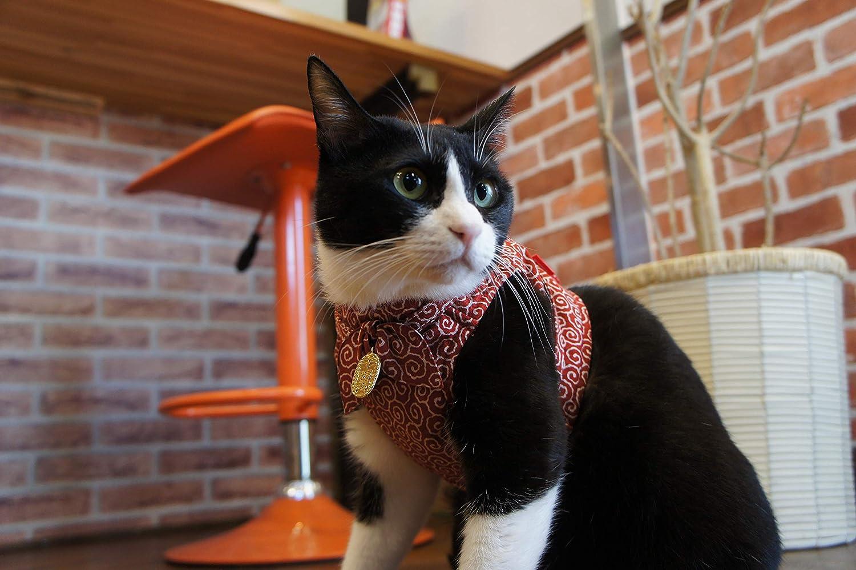 Necoichi Ninja Cat Harness & Leash