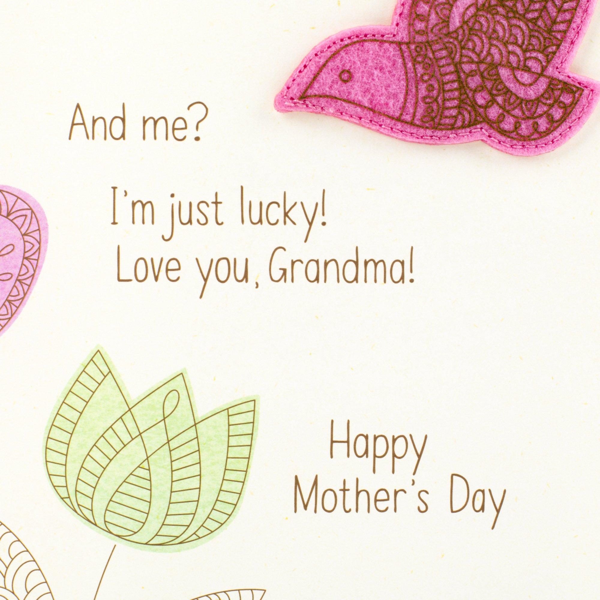 Hallmark Mothers Day Greeting Card For Grandma Felt Bird Magnet