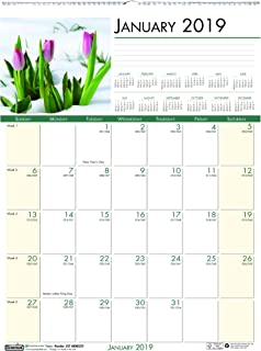 product image for House of Doolittle 2019 Monthly Wall Calendar, Earthscapes Flowers, 12 x 16.5 Inches, January - December (HOD327-19)
