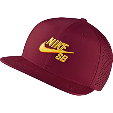 brand new 5a8b1 2663e Image Unavailable. Image not available for. Color  Nike SB Performance  Trucker ...