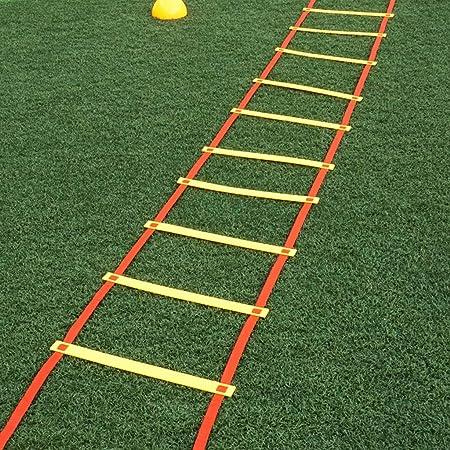 ABCCS Escalera Deportiva de la escalerade Entrenamiento Equipo de Entrenamiento de fútbol Escalera de Salto Taekwondo Fitness celosía Material de protección Ambiental Sección de Engrosamiento: Amazon.es: Hogar