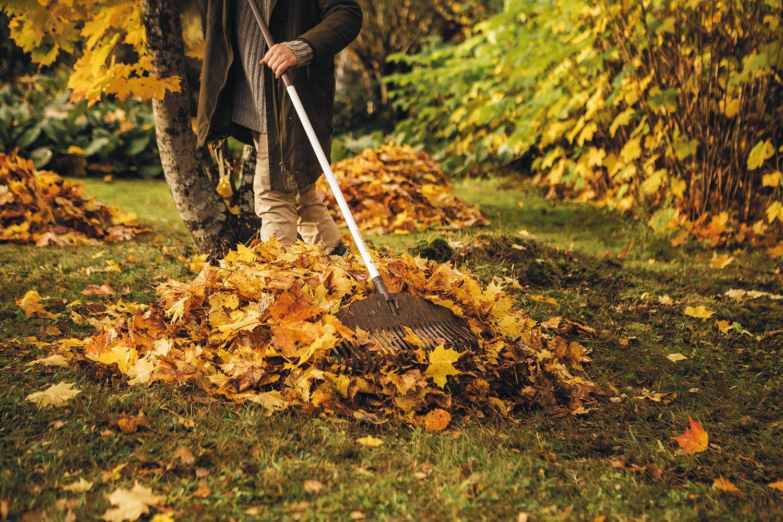 Fiskars Escoba para hojas ligera, 25 dientes, Longitud: 52 cm ...