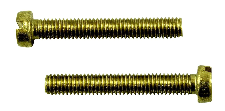 SN-TEC Messing Schlitz Gewindeschrauben DIN 84 mit Zylinderkopf M6 x 20mm (20 Stü ck)