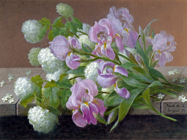 flowers iris by R. Longpre Tile Mural Kitchen Bathroom ...