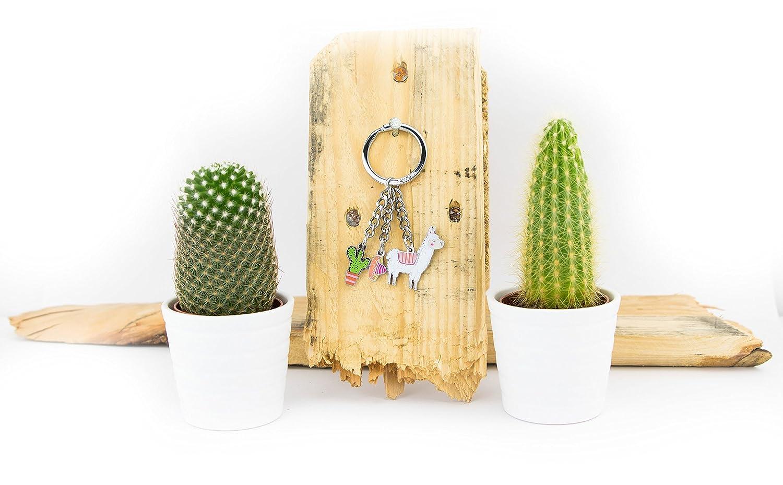 Amazon.com: TROIKA PAKO – KR18-10/CH – Keyring with 3 charms ...