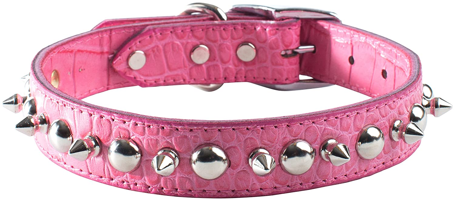 OmniPet Faux Crocodile Signature Leather Pet Collar with Spike and Stud Ornaments, Pink, 1 by 24