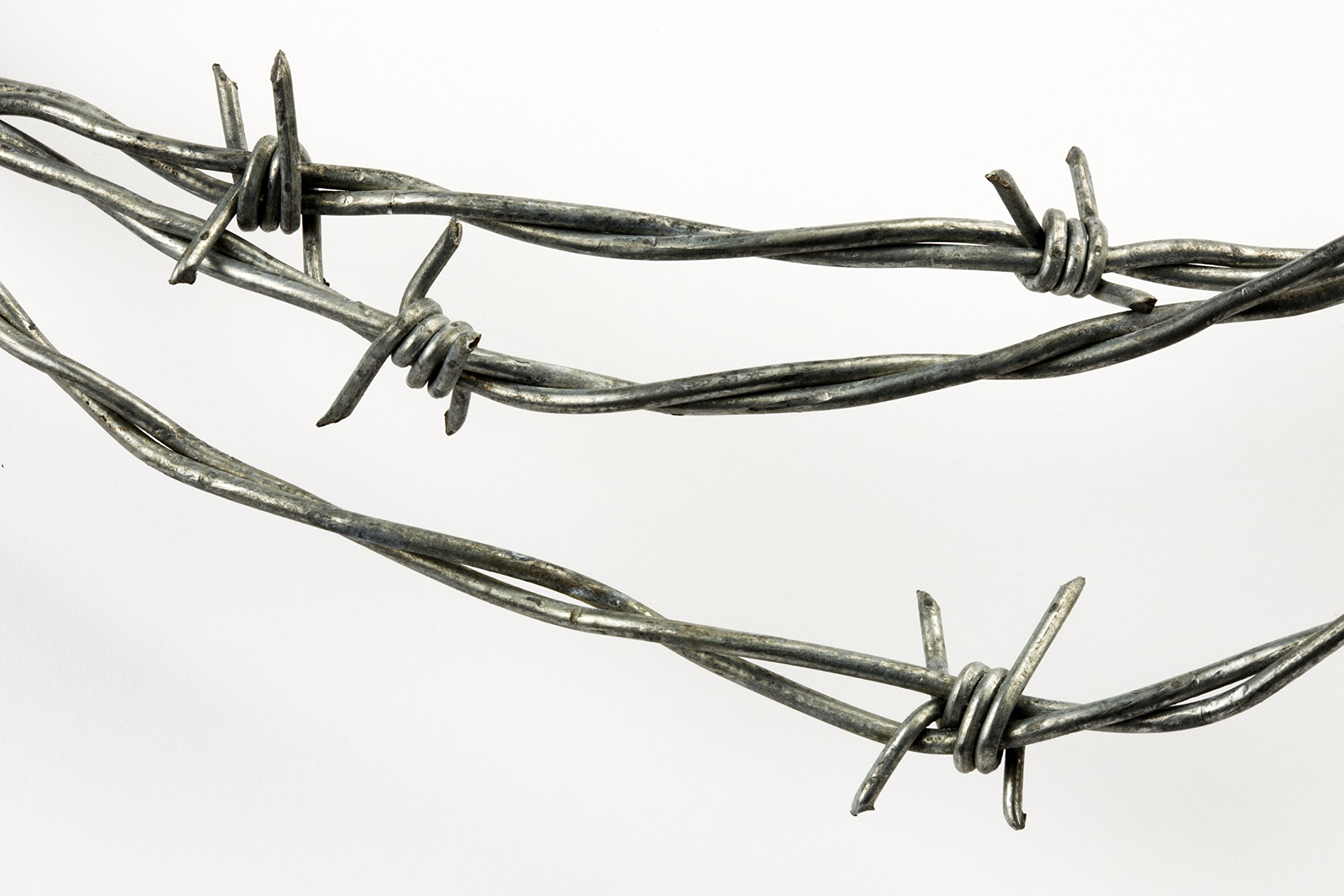 50 Feet Real Barbed Wire - Light Duty 18 gauge 4 pt MADE IN USA ...