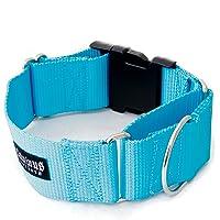 11/5,1cm Martingala W/Hebilla Perro Collars-Heavy Duty (3,8cm Ancho de Nylon Perro Abrazaderas Varios Colores)