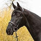 RH schwarz Warmblut Kieffer Trense Ultrasoft/© Economy II mit Silberkette ENGL