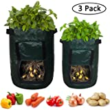 Gizhome 3 Pack Grow Bags Planting, 1 x 10 Gallon + 2 x 7 Gallon Plant Root Vegetable, Use as Planter & Garden Pots Outdoor Potato Grow Bags with Handle & Access Flap