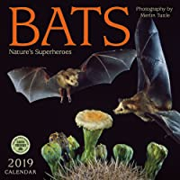 Bats 2019 Wall Calendar: Nature's Superheroes