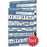 Productive Fitness Publishing Poster représentant des exercices d'haltérophilie