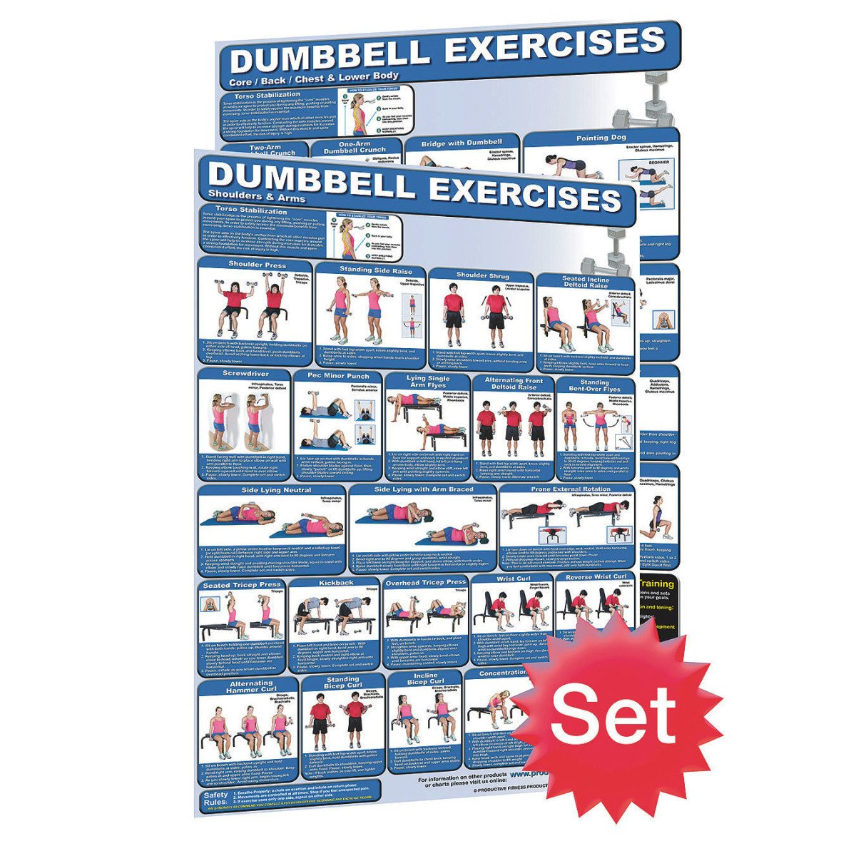 Laminated dumbbell exercises training chart set 1 shoulders and laminated dumbbell exercises training chart set 1 shoulders and arms training poster 2 core legs chest and back training poster dumbbell fitness geenschuldenfo Choice Image