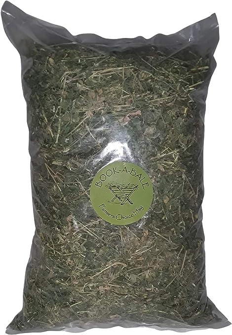1 kg Heno de Alfalfa de Calidad - Fresco directamente del ...