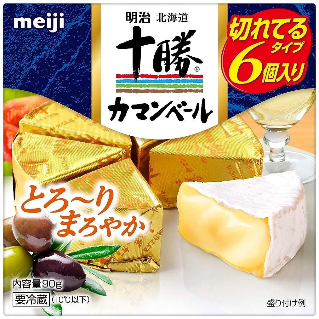 のために犯人チップミートガイ ハルミチーズ (250g) Halloumi Cheese