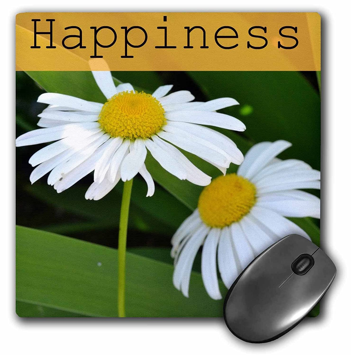 Amazon 3drose Llc 8 X 8 X 025 Inches Mouse Pad Happiness