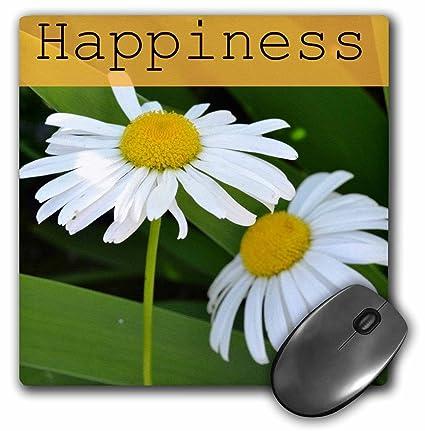 Amazon.com : 3dRose LLC 8 x 8 x 0.25 Inches Mouse Pad ...