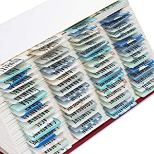 Bible Tabs Old and New Testament, Large Print and Easy-to-Read Bible Journaling Supplies, Personalized Bible Tabs for Women, Laminated 80 Bible Index Tabs (66 Books, 14 Blanks).