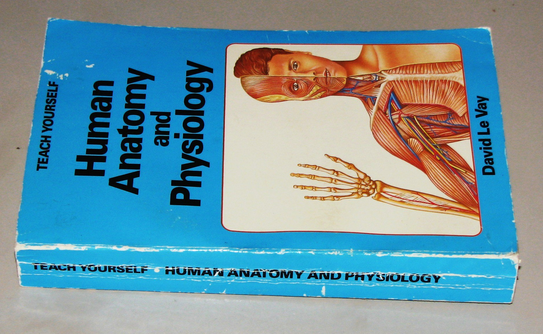 Buy Human Anatomy and Physiology (Teach Yourself) Book Online at Low ...