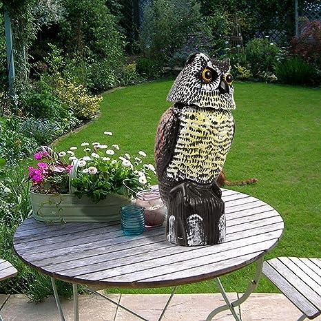 Amazoncom Dtemple Realistic Garden Owl Scarecrow Garden