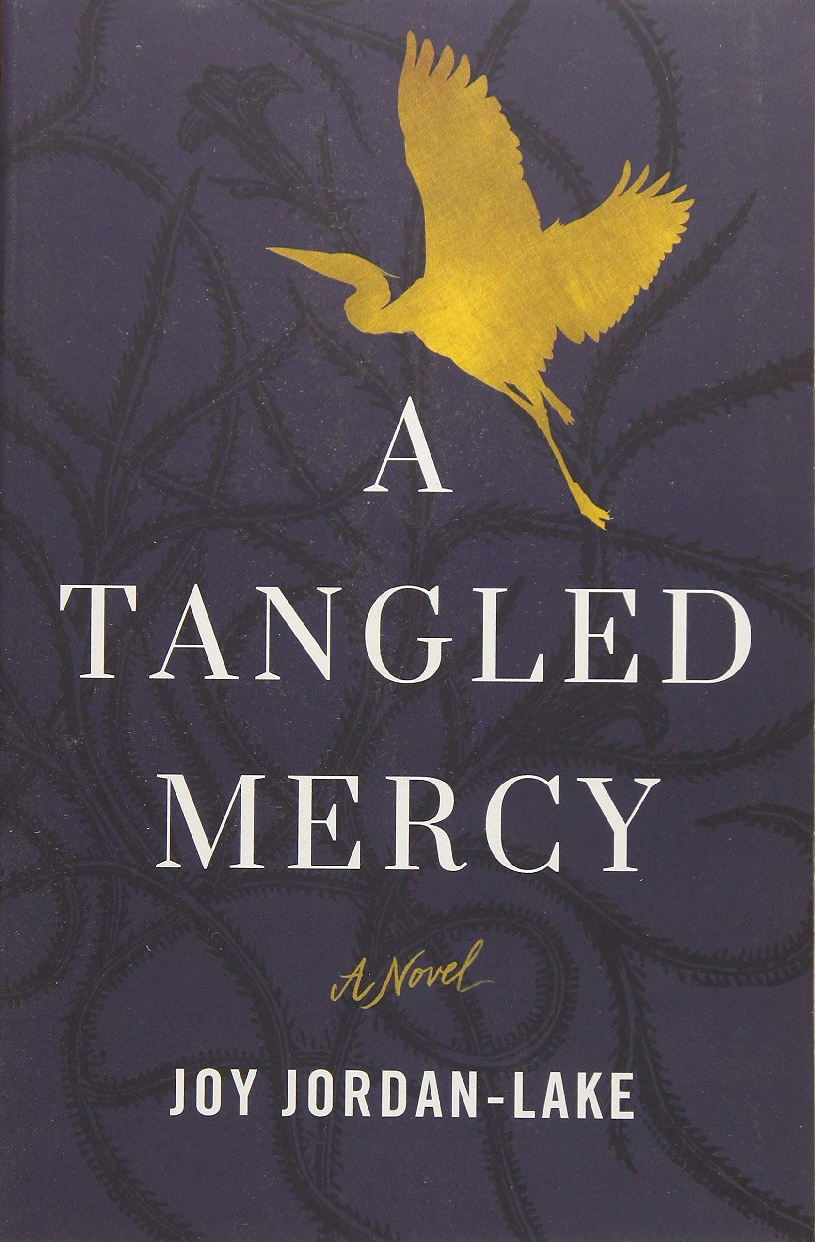 A Tangled Mercy: A Novel pdf