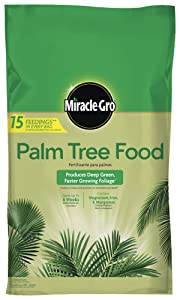 Miracle-Gro 1602210 Palm Tree Food