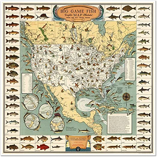 11x14 Unframed Print Great Gift 1935 Salt Water Game Fish of North America Map