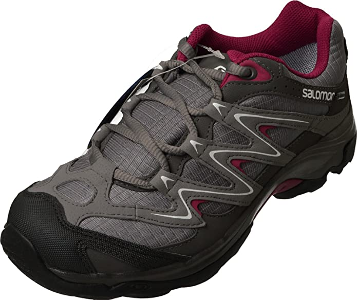 Salomon Campside Low GTX II W - 42: Amazon.es: Zapatos y complementos