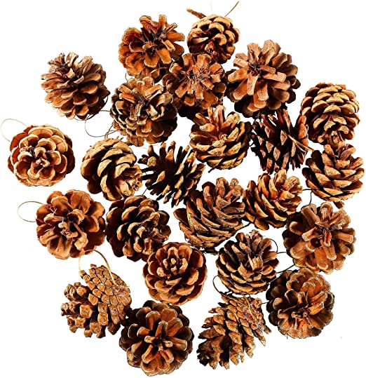 30x Mini Small Decorative Pine Cones for Home Party Ornament Wedding Decor