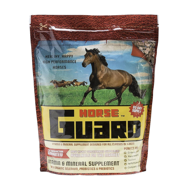 Amazon.com : Horse Guard Equine Vitamin Mineral Supplement, 10lb : Pet  Supplies