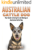 Australian Cattle Dog - A Guide to Taking Care of an Australian Cattle Dog
