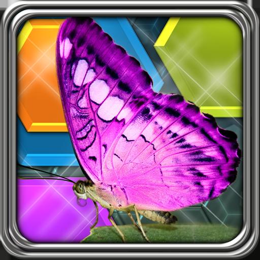 HexLogic - Butterflies ()