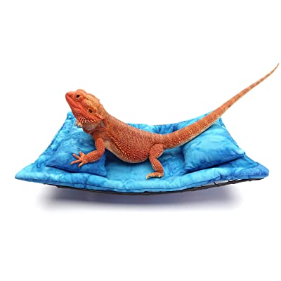 Chaise Lounge for Bearded Dragons, Blue Heaven Batik Fabric : Garden & Outdoor