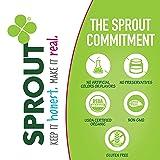 Sprout Organic Crinklez Toddler Snacks, Variety