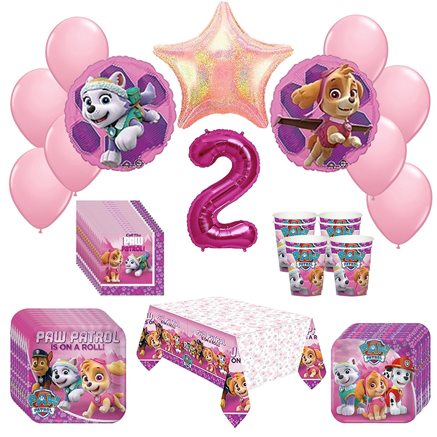 Girl Pups Paw Patrol Skye & Everest 2st Birthday Party Pack 52pc