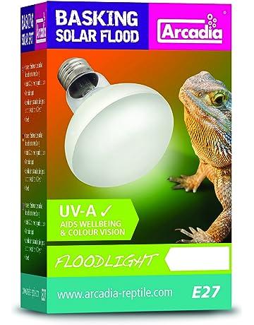 Amazon.es: Focos - Iluminación del hábitat: Productos para ...