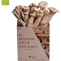 SETAS MELI   Kit Autocultivo Setas Ecológicas