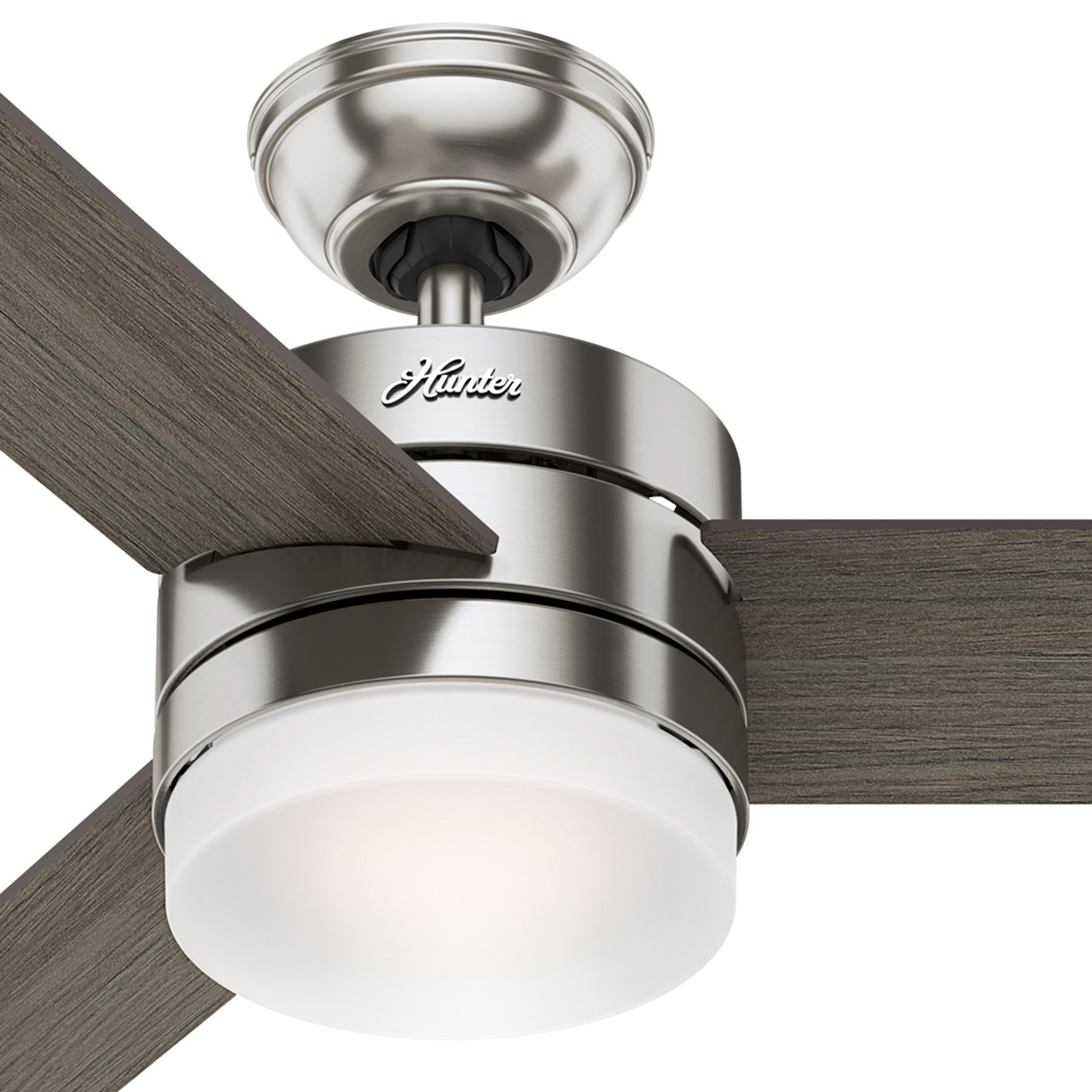 Hunter 54'' Contemporary Ceiling Fan with Remote Control in Brushed Nickel (Certified Refurbished) by Hunter Fan Company