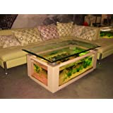 Amazing 36gl Rectangle Coffee Table Aquarium, Completely Fish Ready With Hidden  Filter And LED Lights