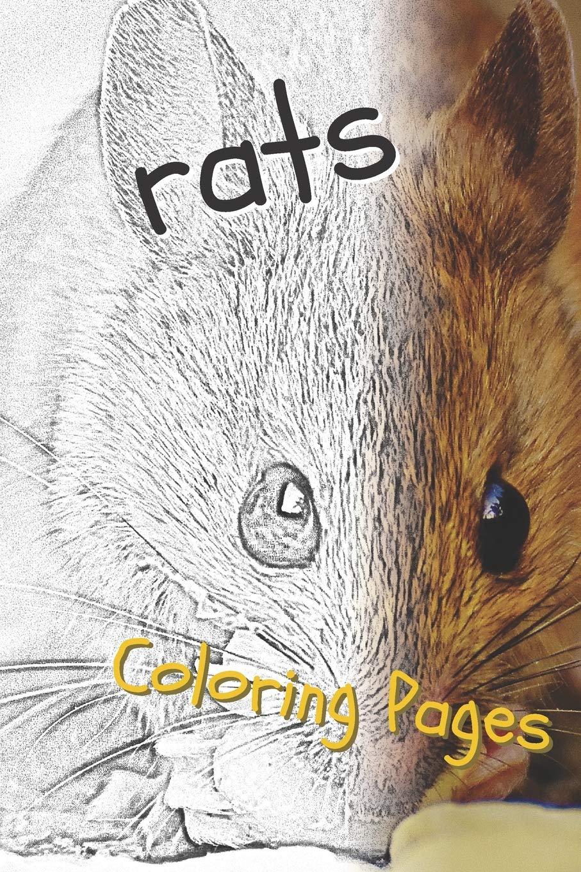 Rat Coloring Pages - GetColoringPages.com   1360x907