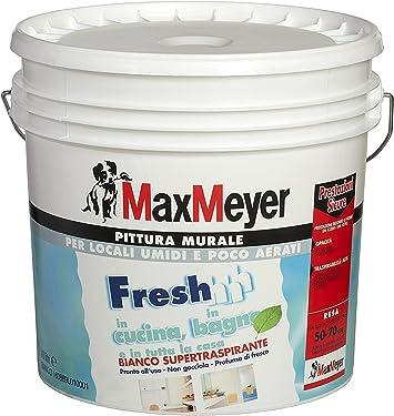 Max Mayer Pittura Murale Supertraspirante Pronta All Uso Alta Copertura Effetto Molto Opaco Resa 10 14 Mq Lt 10 Lt Amazon It Fai Da Te
