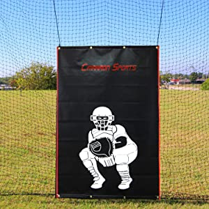 Cimarron Sports 4 x 6 Foot Baseball Softball Pitcher Training Aid Practice Batting Cage Net Vinyl Backstop with Catcher Image, Backstop Only