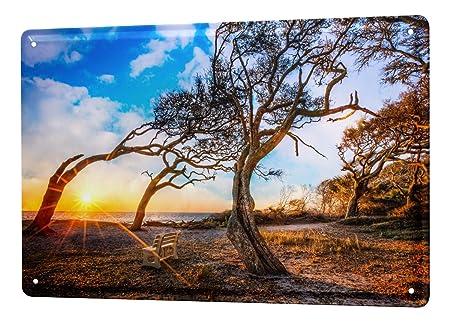 Cartel de chapa Placa metal tin sign Playa Banco sunset ...