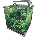 Amazon Com Jbj Nano Cube Dx Aquarium 6 Gallon