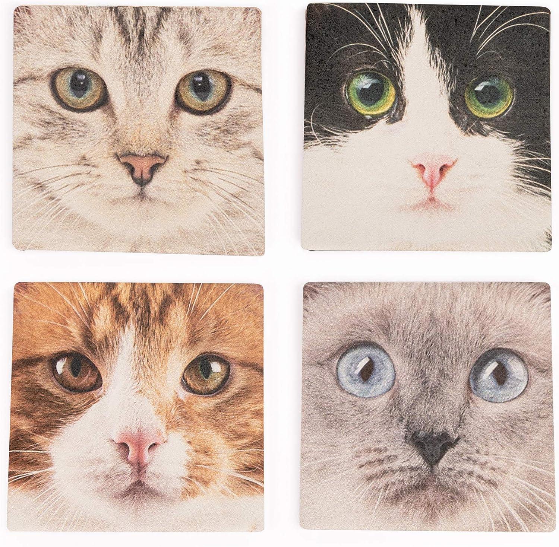 Ceramic kitten coasters