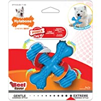 Nylabone NXX001P Dura Chew X Bone Beef Flavored Dog Chew Toy, Small
