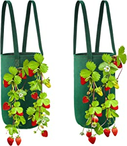 2 Pieces Hanging Strawberry Planter Strawberry Bare Root Plant Bag Garden Upside Down Strawberry Planter Felt Material Strawberry Grow Bag Garden Vegetable Planting Bags with Holes for House Garden