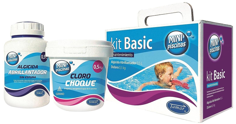 Tamar - Kit Básico Mantenimiento Mini Piscinas, Especial para piscinas Liner.: Amazon.es: Jardín